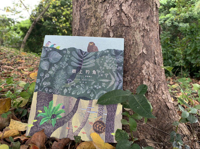 林务局今年出版绘本「树上的鱼」。 图/林务局提供