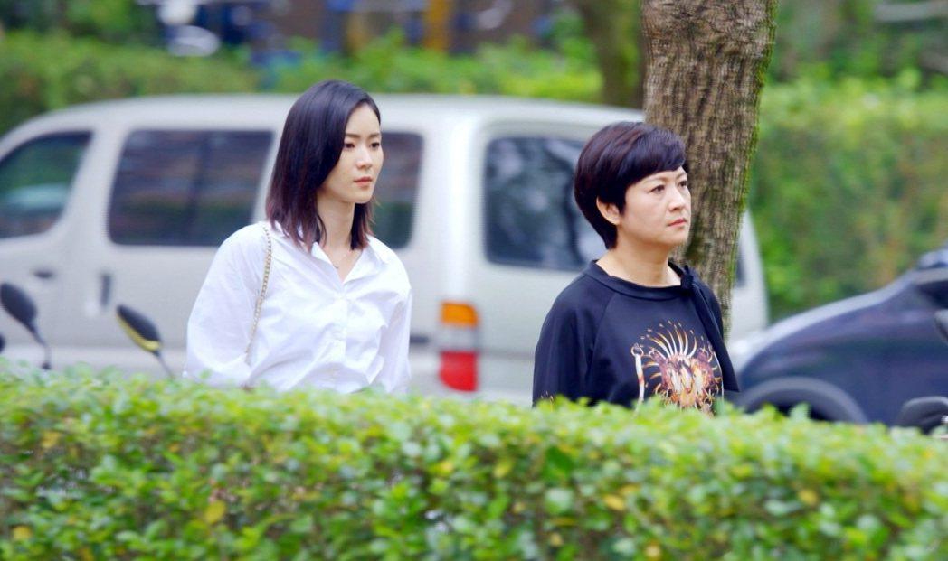崔佩儀(右)重回戲劇圈,和鍾瑤演母女。圖/三立提供