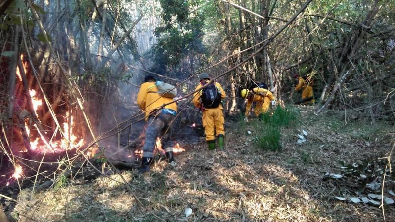 山區林地乾旱,高市六龜新威山區林地起火,今天仍有零星火苗尚未熄滅。圖/林務局提供