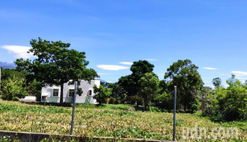 台東縣南橫山區天空現驚奇,今天上午「飛碟雲大爆發」,盧姓鹿野鄉民上午9點多就看到5朵飛碟高掛天空,上午10點45分多數已被風吹散。記者羅紹平/攝影