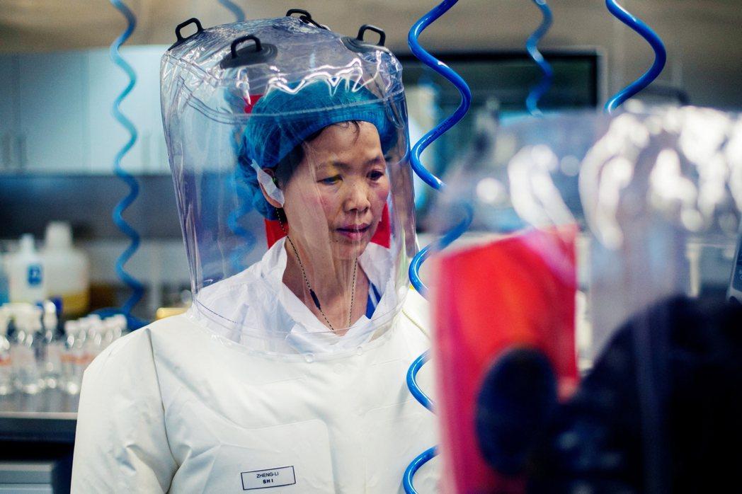 圖為2107年,武漢P4實驗室的資料照片。圖為武漢病毒研究所副主任石正麗。 圖/...