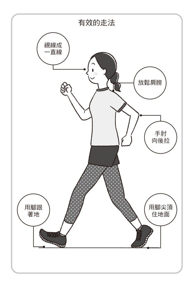 只要這麼走,「走五百步就能有三千步的效果」,還有「能夠當成運動的走法」。 圖/聯...