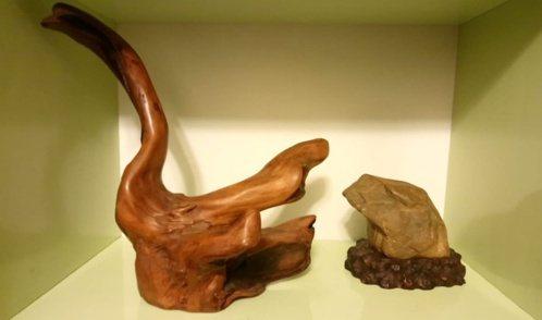 黎時城用天鵝木雕搭配形如蟾蜍的蠟石,取名「力爭上游」。作品非指癩蛤蟆想吃天鵝肉,...