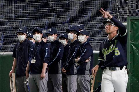 日本再延緊急事態:日職遲未開幕,疫情全面衝擊棒球產業鏈