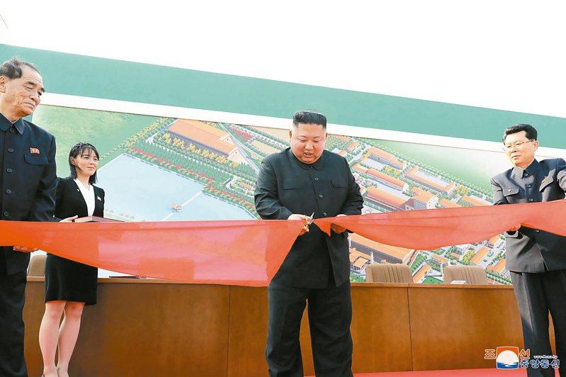 北韓最高領導人金正恩(中)五月一日公開露面,為順川磷肥工廠竣工剪綵。美聯社