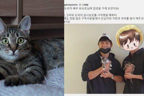 南韓一位讀獸醫學系的YouTuber「갑수목장gabsupasture」去年9月時因曝光俞承豪暖心領養小貓而登上新聞,當時他還在YouTuber頻道中曝光與余承豪一起抱著小貓的合照,表示「將奶貓們送...