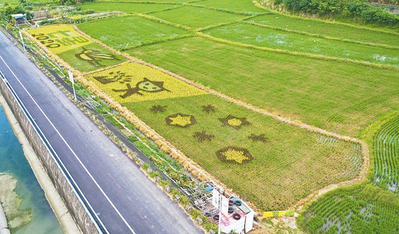 關渡平原稻田彩繪預計5月10日至6月10日為最佳觀賞期間。 圖/產業局提供