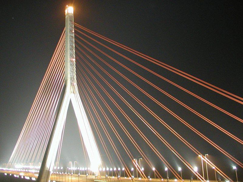 橫跨高屏溪的斜張橋,入夜後在燈光照射下雖美,但橋上百盞探照燈強光,卻也影響鳥類生態系。圖/聯合報系資料照片