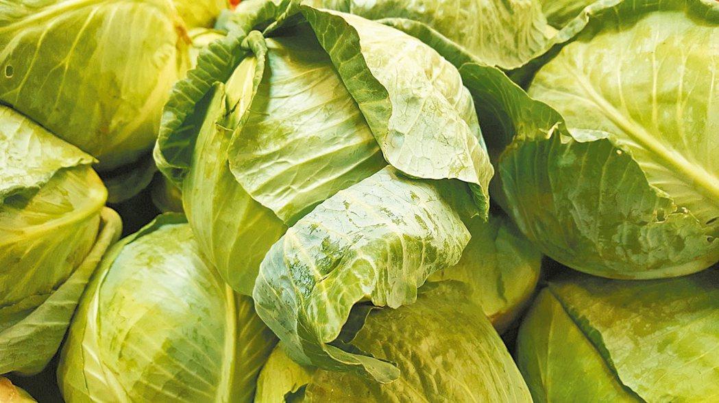 高麗菜抗癌保鑣 圖/123RF、pixabay
