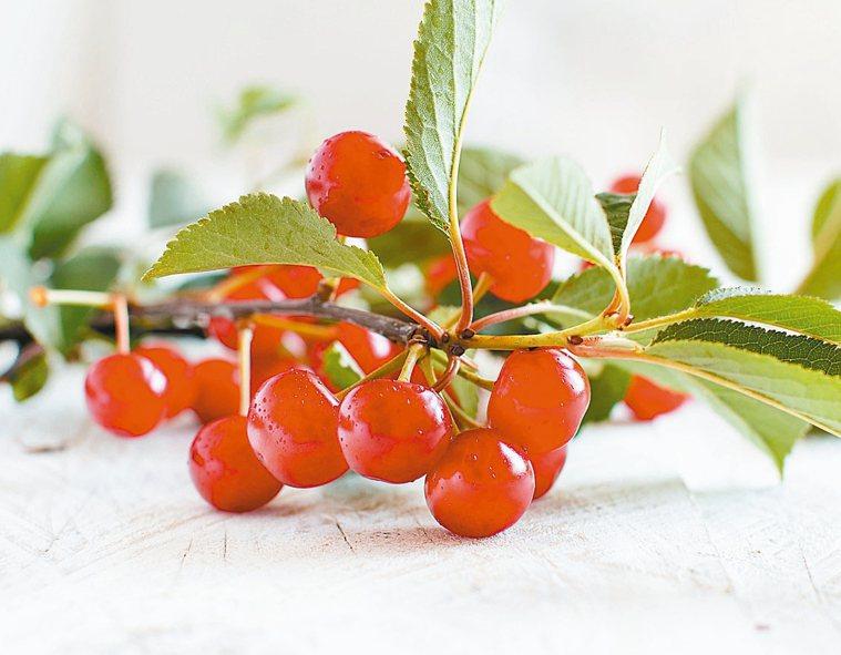酸櫻桃幫助一夜好眠 圖/123RF、pixabay