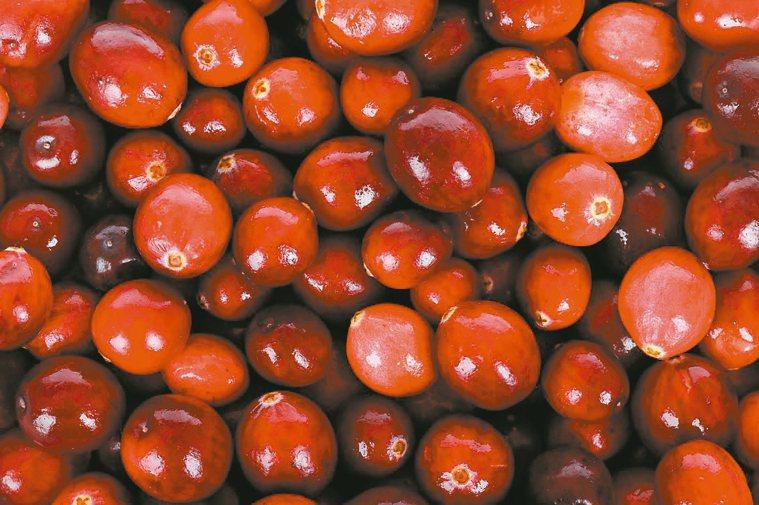 蔓越莓抗癌也護心 圖/123RF、pixabay