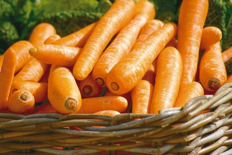 胡蘿蔔幫助抵抗感染 圖/123RF、pixabay