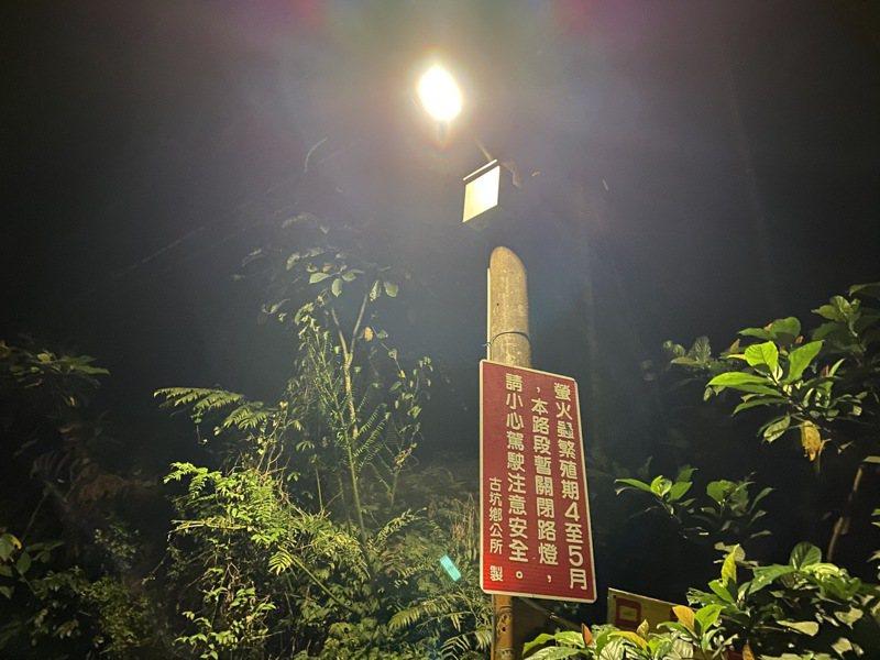 螢火蟲繁殖季節雖已到,但雲林縣古坑鄉桂林村雲212螢火蟲路段今年路燈無法關閉,沿途路燈光線明亮,根本看不到螢火蟲。 記者陳雅玲/攝影