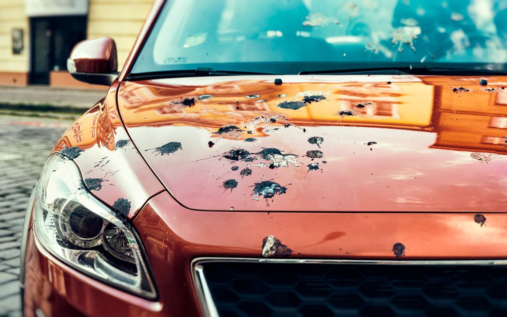 Ford以人工鳥屎進行試驗,希望強化車漆避免受到鳥屎的傷害。 摘自nsford....