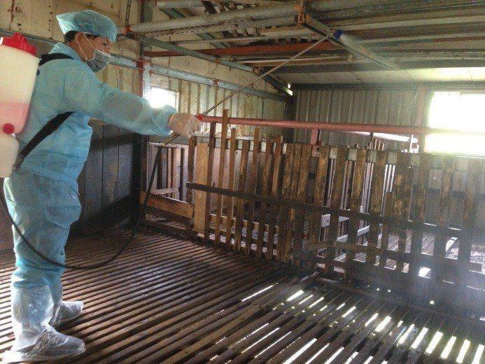 新北市動保處輔導養牛、羊場周邊環境消毒。圖/新北市動保處提供