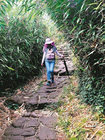 曬太陽當然不可或缺,我們會去大安森林散步,台北近郊小山健行,或到陽明山踏青,就成...