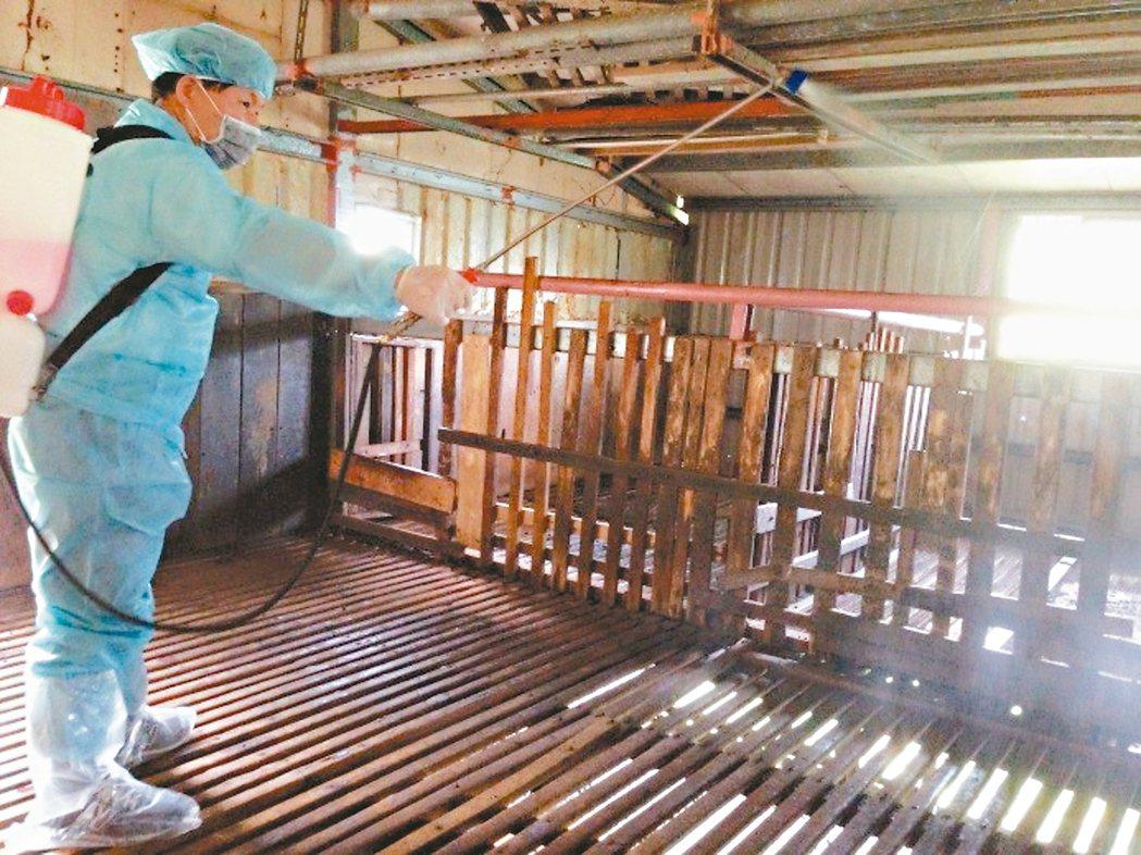 新北市動保處輔導養牛、羊場周邊環境消毒。 圖/新北市動保處提供