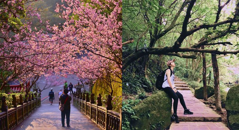 圓覺寺步道充滿綠意盎然的氣息。 圖/IG網友王智勇授權  圖/IG網友宋心授權