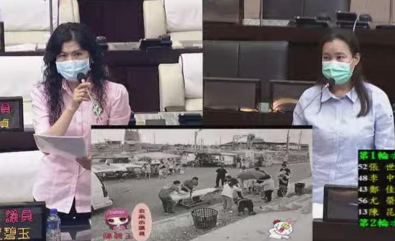 台南市民政局今天在議會備詢,議員陳碧玉(左)指出,去年7月七股區公所在六孔碼頭舉辦摸蛤體驗,結果因樓梯沒有扶手,導致住在新市區的陳姓婦人摔成植物人。記者鄭維真/翻攝