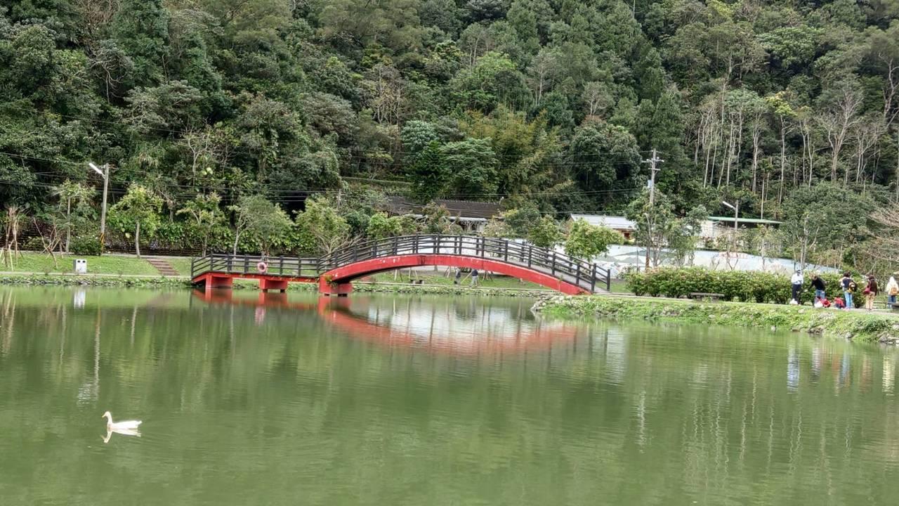 宜蘭望龍埤湖光山色,水面倒映著山景,成了一片碧綠。 圖/戴永華攝影