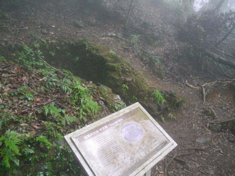 早年木炭窯依著山坡地而開鑿,目前山上遺址僅剩一處圓形凹洞,解說牌年久失修。 圖/...