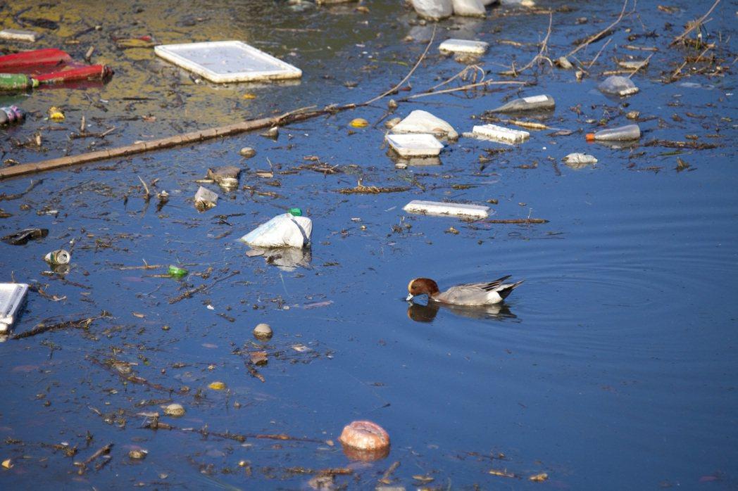 台灣水質中常見重金屬、氯等不好物質,若無安全過濾直接影響健康。 業者/提供