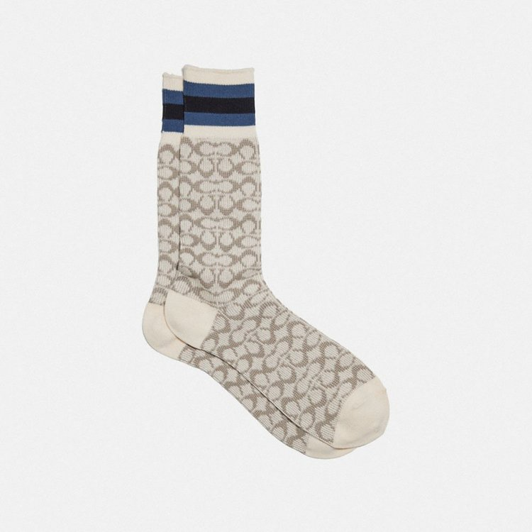 Signature C印花襪(男裝),2,500元。圖/COACH提供