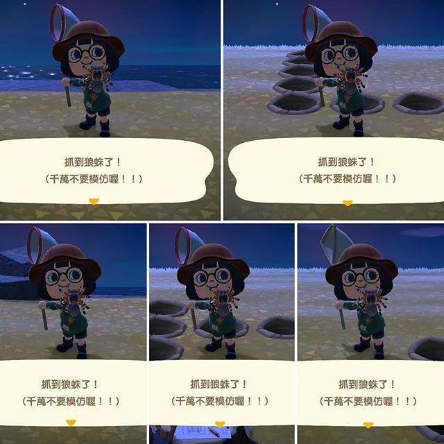 楊丞琳分享抓到狼蛛的畫面。圖/擷自楊丞琳IG