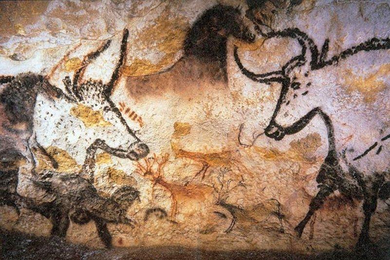藤田畫作線條靈動,是受到洞窟繪畫的影響。圖為拉斯科洞窟壁畫。 圖/維基共享