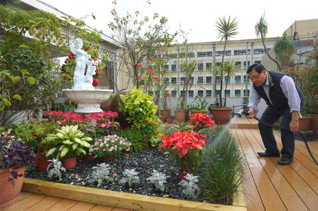 在頂樓花園蒔花弄草是張金堅的抒壓方式之一。 圖片提供/今周刊幸福熟齡,攝影/林芷...
