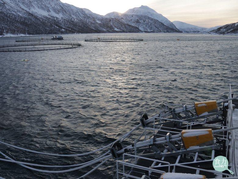 挪威的鮭魚養殖場設置在海上(左上方即為養殖箱網),工作船上配置有自動飼料餵食器,...