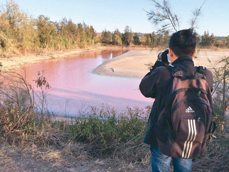 金門金寧鄉古寧頭的「粉紅池塘」意外爆紅,吸引不少人到場朝聖,成為新的打卡景點。 記者蔡家蓁/攝影