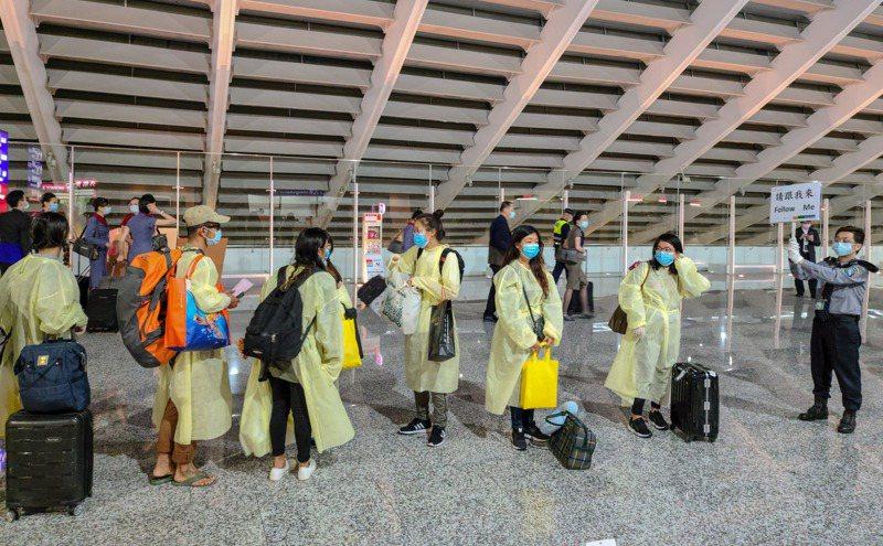 滯留在馬爾地夫的國人昨晚終於回家,工作人員引導他們一起入境。 記者鄭超文/攝影