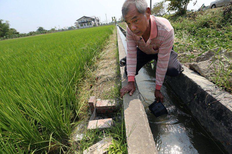 農田水利會改制公務機關將於今年十月上路。 圖/聯合報系資料照片