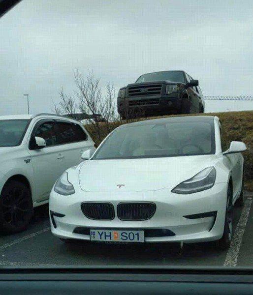 冰島的一輛Model 3裝上BMW的雙腎形水箱罩。 摘自Creative Tre...