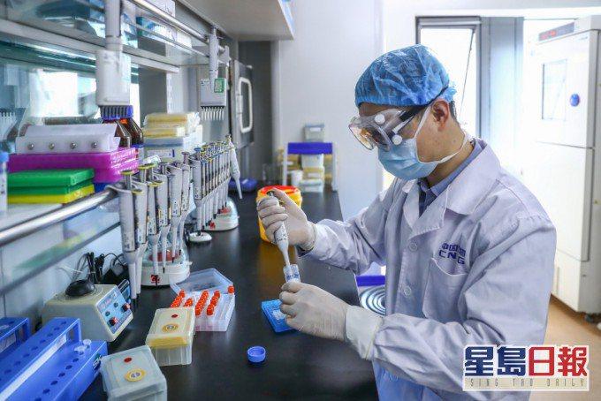 大陸研究團隊發現可阻斷新冠病毒感染抗體。星島網