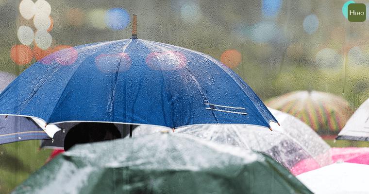 梅雨季節溫暖多濕的氣候,溫度、濕度非常適宜各種黴菌、塵蟎繁殖,再加上梅雨季節氣溫...
