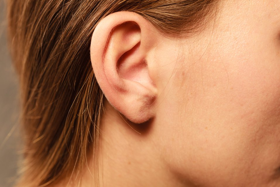 我們耳朵上的穴位也是相當豐富,透過適當的耳穴按摩也可以幫助改善不適症狀。圖/in...