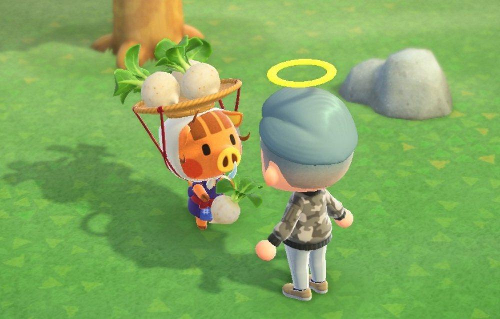 許多玩家在《動物森友會》都是靠買賣大頭菜發大財