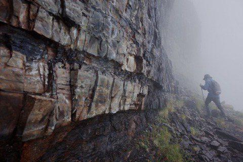 大霸尖山前往小霸尖山途中,一路沿著大霸尖山的霸基行走,霸基由板岩與頁岩所構成,一...