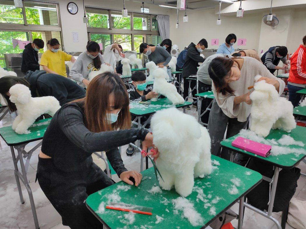 元培寵保系設置標準考場支援美容實作課程,提升學生實作能力,培養寵物美容專才。 元...