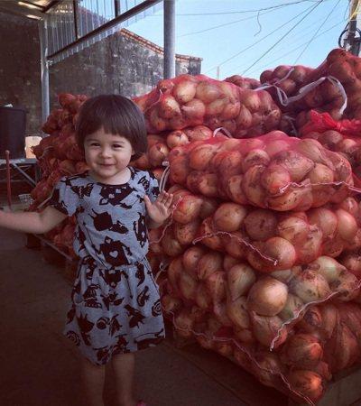 價廉物美的洋蔥含有豐富的鈣,醫學上研究發現,停經後的婦女經常食用洋蔥,可以有效阻...