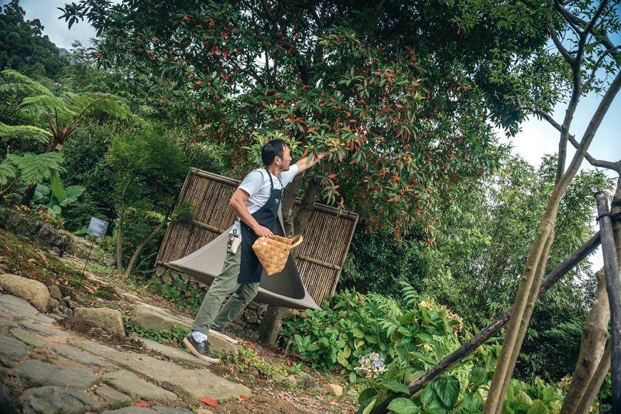 精心布置這座花園,滿足了凌宗湧的園藝癮。 圖/取自50+(Fifty Plus)
