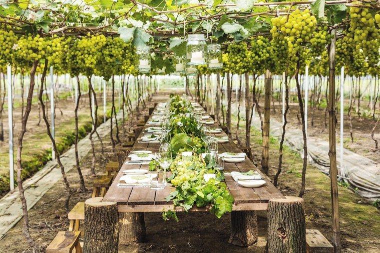 第一次在富春山居度假村舉辦「跟著花開去旅行」,凌宗湧和學員用葡萄葉和藤完成豐盛感...