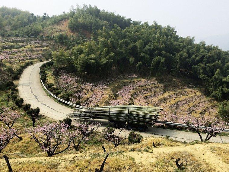 在杭州富春山居度假村,竹子就是隨手可得的素材,用在花藝作品中再理所當然不過。 圖...
