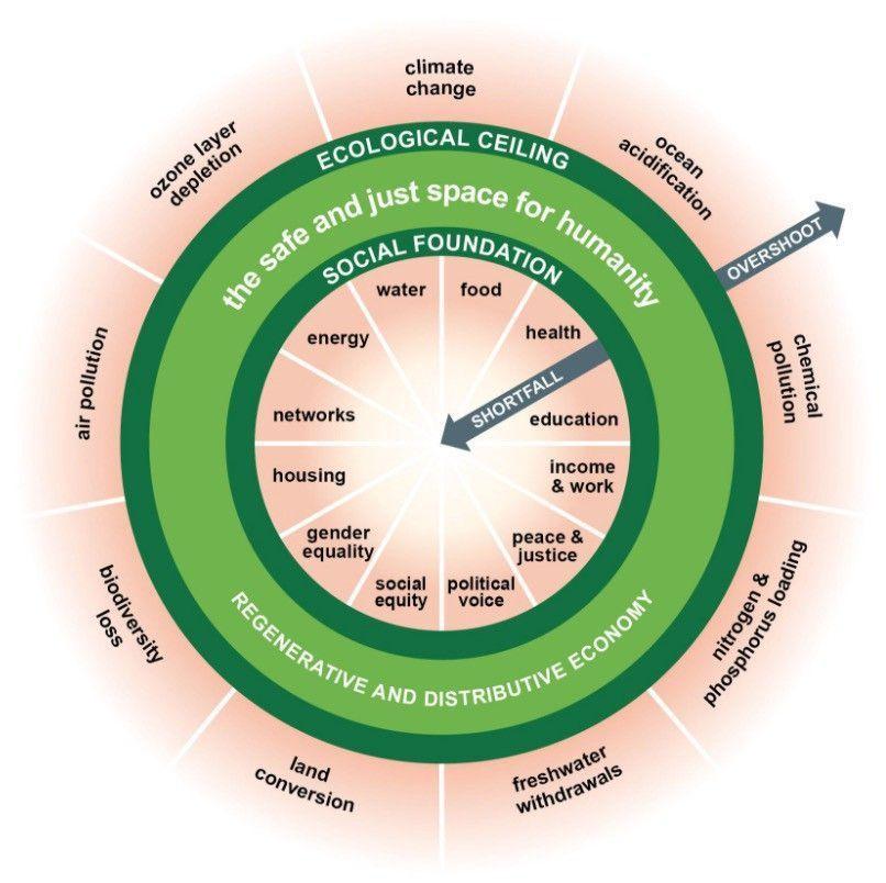 經濟學者凱特拉沃斯設計出提出的甜甜圈經濟架構。 圖/摘自Kateraworth....
