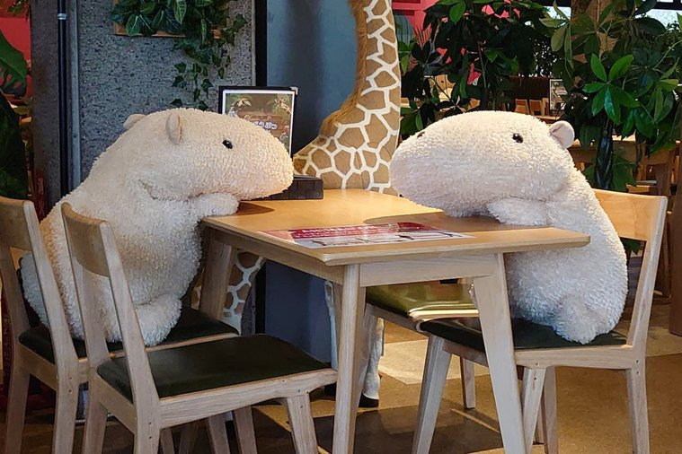 防疫期間,日本餐廳為了派出水豚君玩偶保持社交距離。圖擷自Twitter