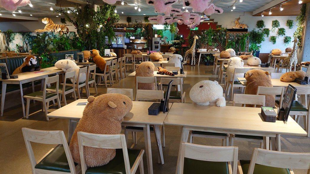 佔據餐廳的水豚君玩偶也成為一大賣點。圖擷自Twitter