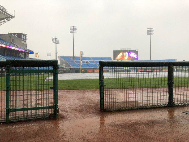 桃園下雨,今天獅戰延賽。 報系資料照