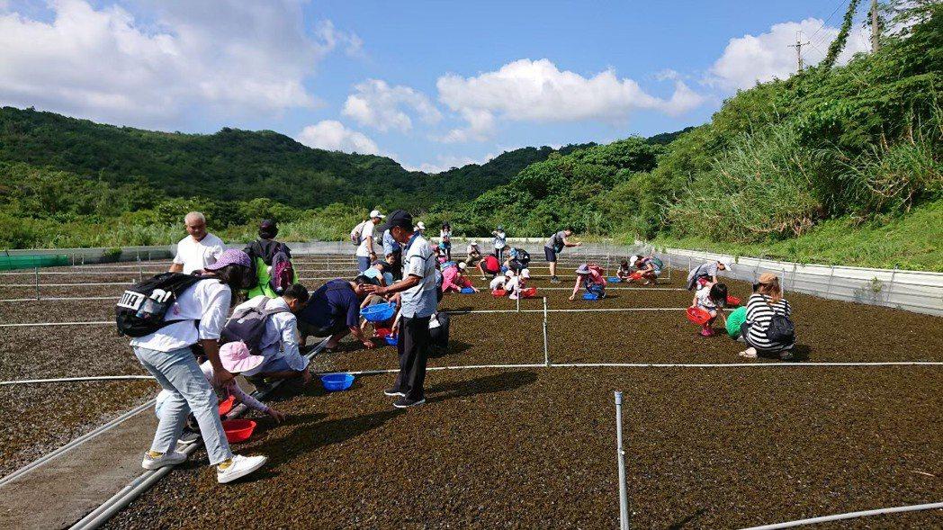 小墾丁渡假村歡迎大家到滿州鄉,參與排灣族獵人學校「選、採、洗、篩、烹、嚐」六種雨...